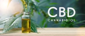 More Than 100 of the Best CBD Memes of All Time