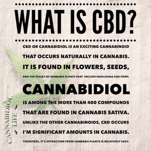 An educational meme describes what CBD is and how it is harvested