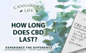 How Long Does CBD Last?