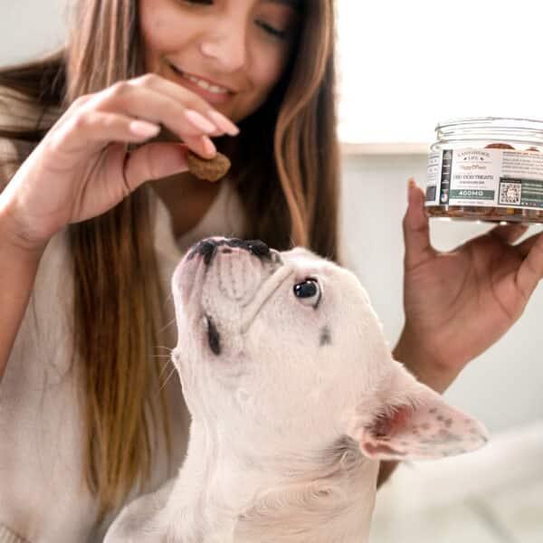 Cannabidiol Life Full Spectrum Cbd Dog Treats 400Mg Of Hemp Extract Per Bottle - 10Mg Per Treat