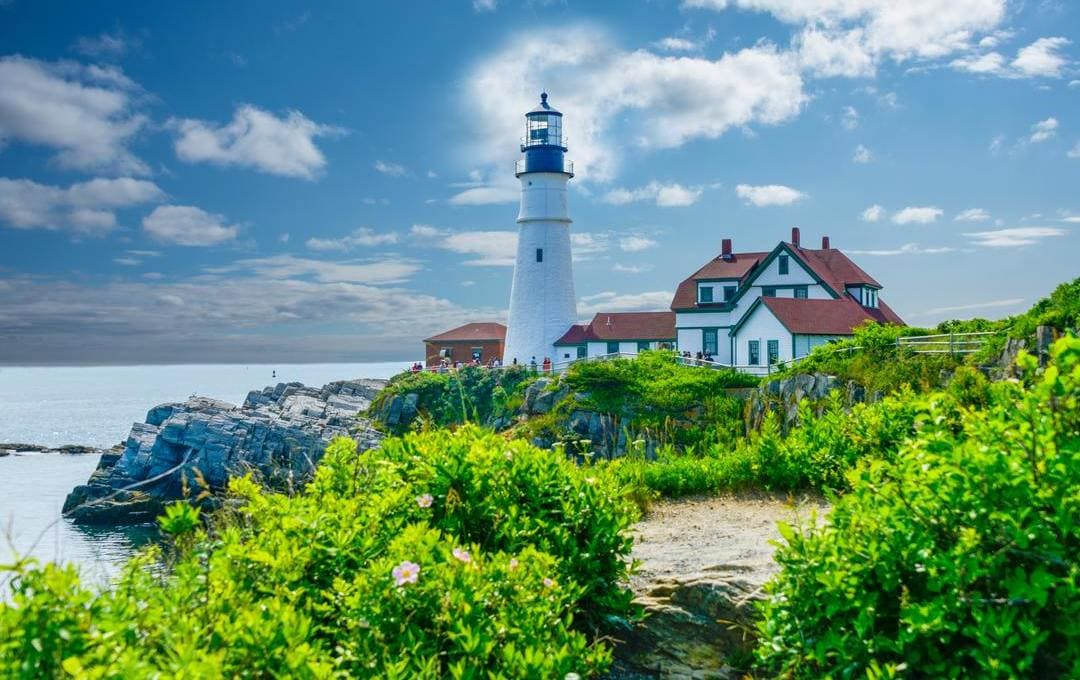 How to Buy CBD Products In Maine