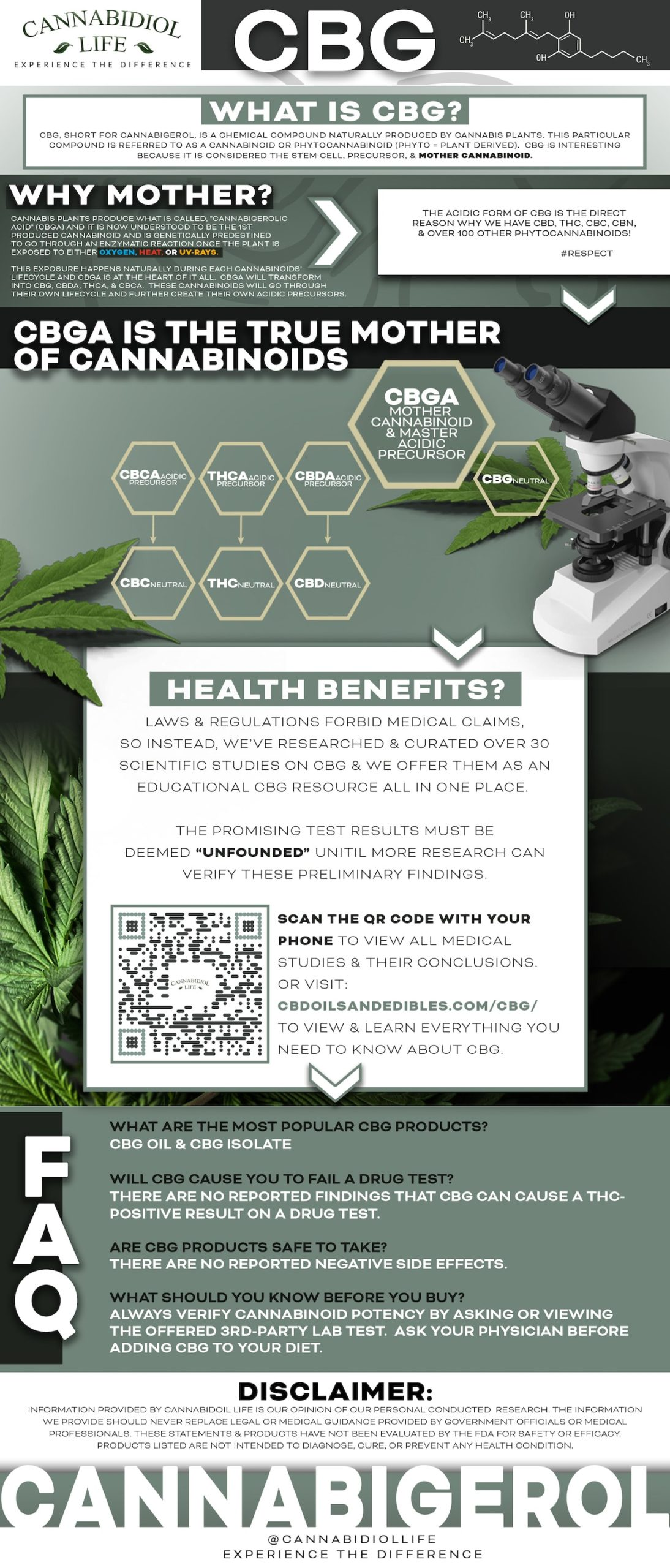 What Is CBG - Cannabigerol Explained