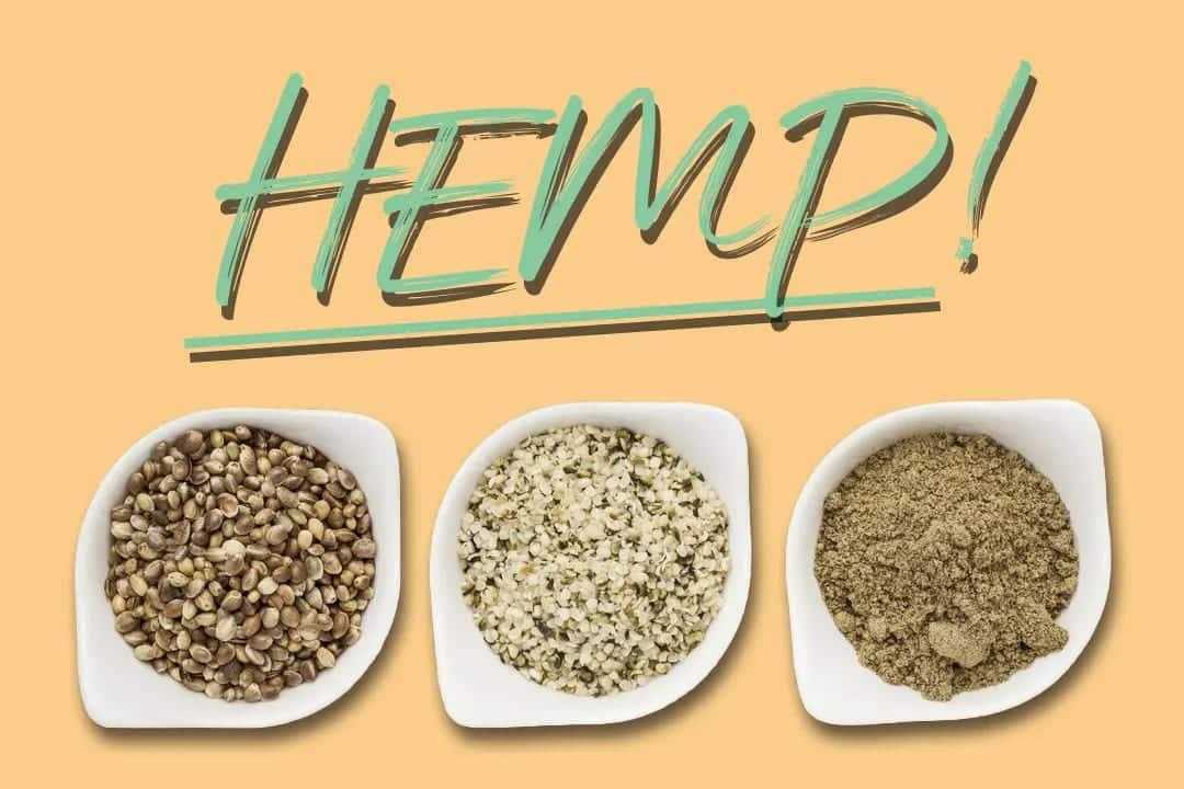 Hemp Protein - What Is Hemp Protein?