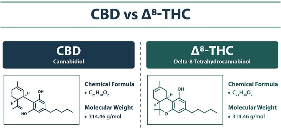 cbd vs delta-8 vs delta-9 infographic