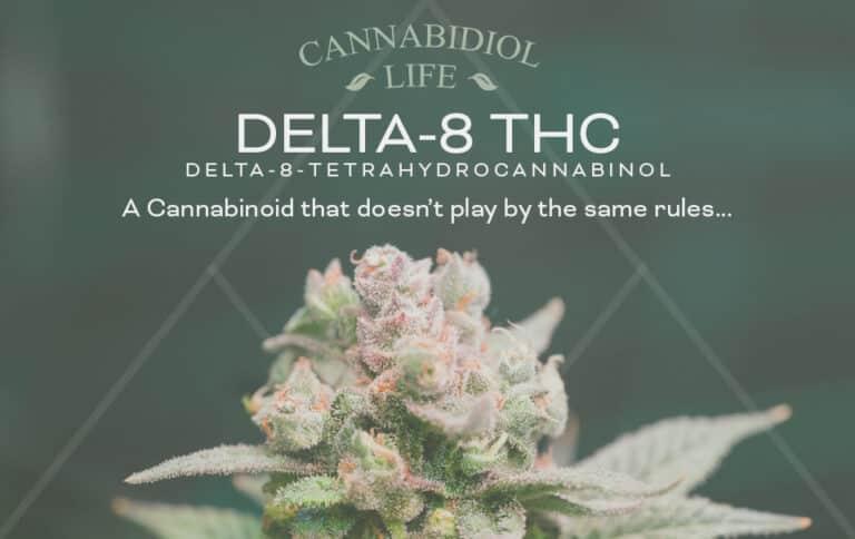 delta-8-tetrahydrocannabinol (thc) guide - cannabidiol life