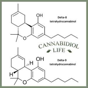 delta 8 vs delta 9 by cannabidiol life - delta-8 thc
