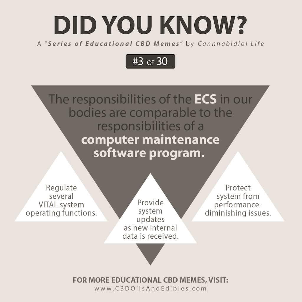 #3 Series Educational Cbd Memes - Ecs Is Like A Computer Maintenance Software Program Analogy